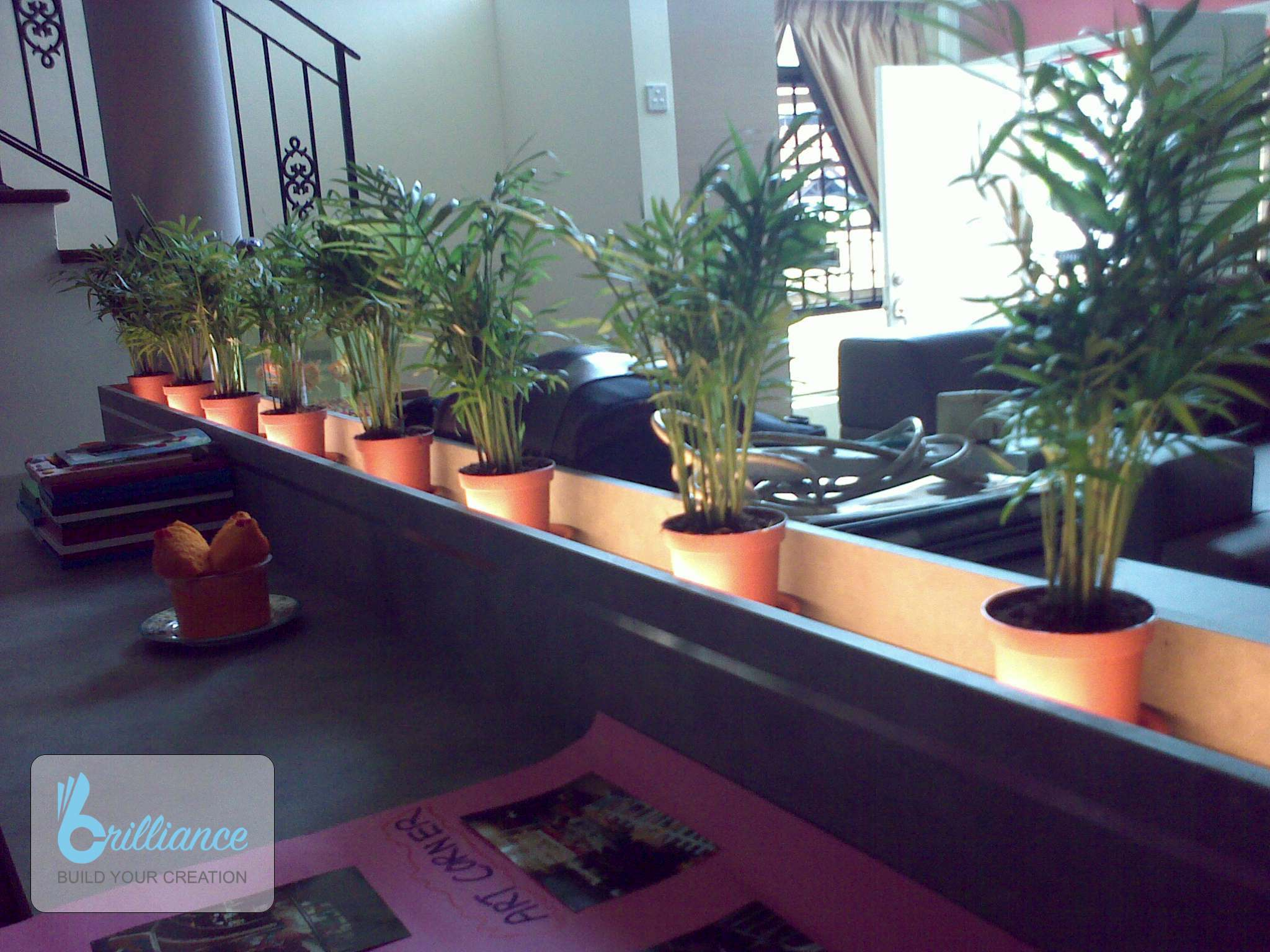 Langsat Road Renovation by Brilliance - plants display